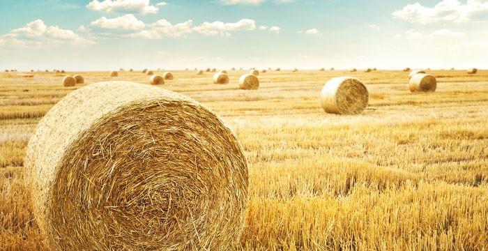 Kredit za kupnju poljoprivrednog zemljišta
